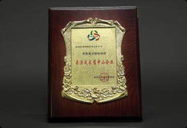 第五届杭州市最具成长型中小企业